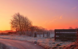 Conto do inverno Imagem de Stock Royalty Free