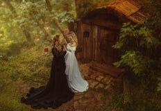 Conto do Maleficent Uma feiticeira escura e uma menina nova, loura Vivem em uma cabana pequena com a madeira e o musgo fairytale imagens de stock