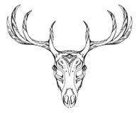 Contorni l'illustrazione di un cranio dei cervi con i corni Immagine Stock Libera da Diritti