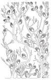 Contorni neri - rami del salice - illustrazione Illustrazione Vettoriale