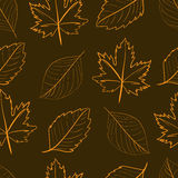 Contorni senza cuciture delle foglie illustrazione vettoriale