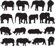 Contorno da silhueta do elefante africano e do rinoceronte branco Foto de Stock Royalty Free