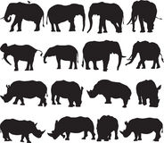 Contorno da silhueta do elefante africano e do rinoceronte branco Imagem de Stock