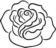 Contorno de Rose Fotografía de archivo