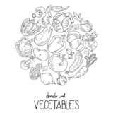 Contorno del fondo que consiste en verduras y los iconos de la fruta dispuestos en un círculo ilustración del vector