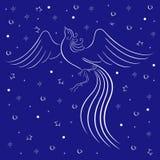 Contorno gracioso do firebird sobre o azul ilustração do vetor
