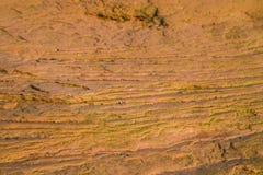 Contornos de la piedra arenisca Fotos de archivo libres de regalías