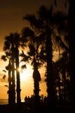 Contornos de palmeras y de la gente en la puesta del sol Sepia Imagen de archivo