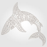 Contour abstract image of a shark, dark outline on a light background Stock Photos