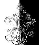 contour bloemenpatroon Royalty-vrije Stock Foto's