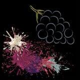 Contour coloré de raisin avec des taches, illustration de vecteur Image stock