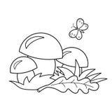 Contour de page de coloration des champignons de bande dessinée Cadeaux d'été de nature Livre de coloriage pour des enfants Photographie stock