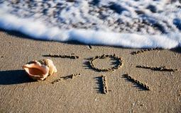 Contour de Sun et le seashell sur le sable humide Image libre de droits