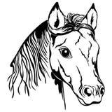 Contour de tête de cheval Photographie stock