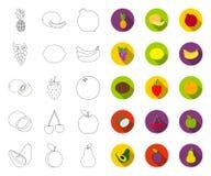 Contour différent de fruits, icônes plates dans la collection réglée pour la conception r illustration de vecteur