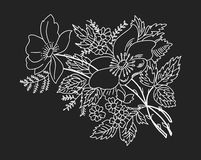 Contour drawing branches colors white on black Royalty Free Stock Image