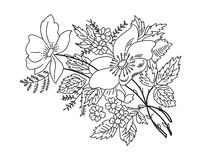 Contour drawing flowers branches black on white Royalty Free Stock Images