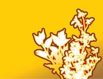Contour floral sur le jaune   Photographie stock