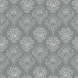 Contour ornament pattern Royalty Free Stock Photography