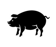 Contour of pig vector illustration Royalty Free Stock Photos