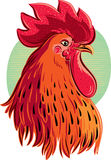 Contour rooster head Royalty Free Stock Photo