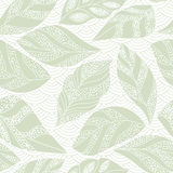 Contour seamless background with leaf Royalty Free Stock Image