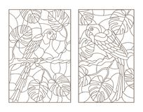 Contour set with  illustrations with birds parrots and leaves of tropical plants, dark contours on white background Stock Photos