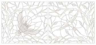 Contour set illustrations of stained glass with birds Stock Images