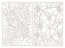 Contour set of illustrations of stained glass with branches of grapes Royalty Free Stock Image
