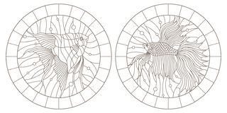Contour set with illustrations in the stained glass style aquarium fish fish and scalars , dark contours on white background,. Set contour illustrations in the vector illustration