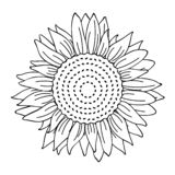 Contour simple de dessin de tournesol pour livre de coloriage illustration stock