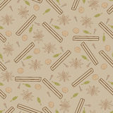 Contour spicy seamless pattern. Illustrations of cinnamon stick, cloves, nutmeg, star anise and cardamom Royalty Free Stock Photography