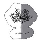 Contour tree with many leaves icon Royalty Free Stock Photo