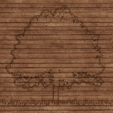 Contour tree on old wooden planks background Stock Photos