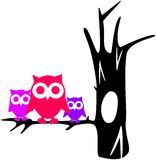 Contour tree with owls Royalty Free Stock Image