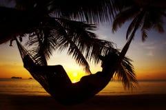 Contour tropical images libres de droits