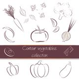 Contour vegetables super pack. Counter, online vegetables set, collection. Great for icons, as design elements on web sites or labels, wrapping paper and Royalty Free Stock Image