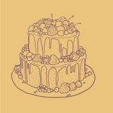 Contourcake met geïsoleerde aardbeien, kersen, bosbessen en chocolade Royalty-vrije Stock Fotografie