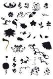 Contours of floral elements Stock Images