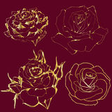 Contours gold roses on red background. Silhouettes of flowers Stock Photos