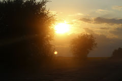 The contours of trees at sunset. Road, dust and contours of trees against the sunset sun Stock Photos