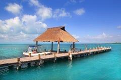contoy海岛墨西哥本质码头预留木头 库存照片