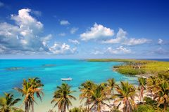 Contoy tropical caribbean island Mexico Royalty Free Stock Image