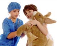 Contrôle de lapin Photographie stock libre de droits