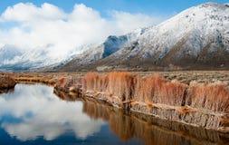 Contrôle d'érosion sur une sierra Nevada Riverbank photo stock