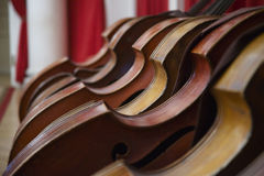 Contra-basses. Six contra-basses (big violins) standing in line Royalty Free Stock Photo