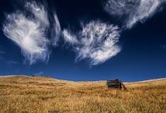 Contra el cielo Foto de archivo libre de regalías