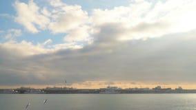 Contra la perspectiva del cielo con las nubes, las gaviotas vuelan almacen de video