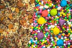 Contra torkade sunda mellanmål för skräpmat och för sötsaker Fotografering för Bildbyråer