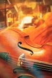 Contrabass на концерте Стоковая Фотография